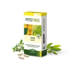 ErbaVita® FitoTree kapszula 30x- Mikrokapszulázással készült, a folyamatos hatóanyag leadásért.