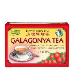 Dr.Chen Galagonya tea 20db