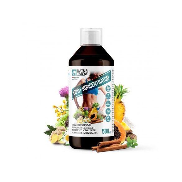 Specchiasol® Lipo+® Lapos has kúra 500 ml- Azoknak fejlesztve, akiknek kritikus terület a has és a csípő!